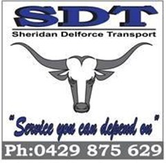 Logo for SDT